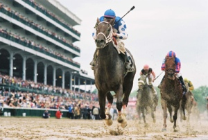 2004 Kentucky Derby. From photog1966 (Flickr).