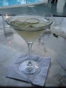 Elixir martini